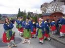 Narrensprung Gottmadingen 2014_56