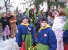 Narrensprung Gottmadingen 2014_68